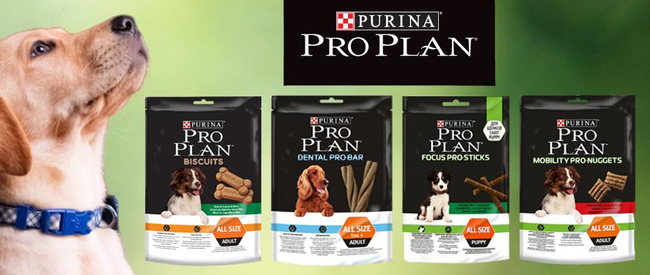 Nyní v nabídce pochoutky pro psy značky PRO PLAN