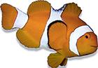 Přípravky - mořská akvaristika