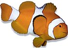 Krmiva - mořská akvaristika