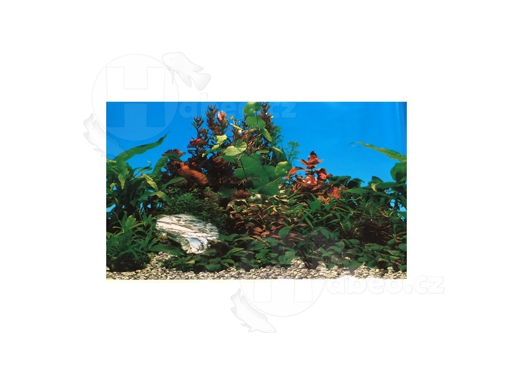 akvarijni pozadi c060030 vyska 305cm (9)