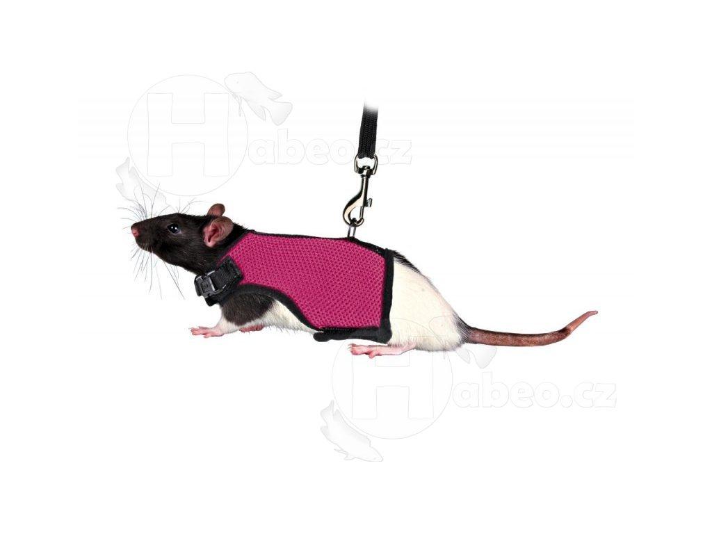 Postroj VESTA s vodítkem pro potkana