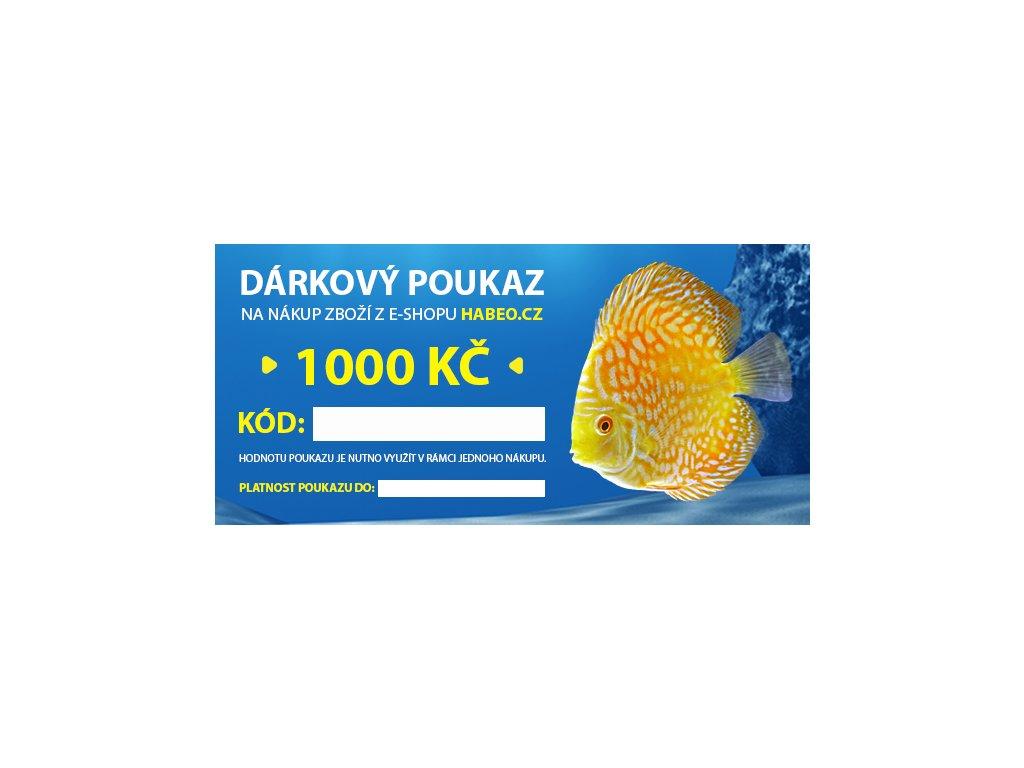 Dárkový poukaz v hodnotě 1000,- Kč - vytištěný v obálce