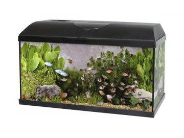 Akvárium PACIFIC 100 x 40 x 40 cm 160 litrů s biofiltrem vybené akvárium LED osvěltení zářivka úsporná žárovka rybičky pro začátečníky Habeo.cz