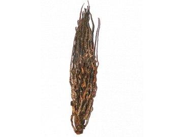 Kokosové okvětí