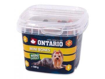 Snack ONTARIO Dog Mini Bones 100 g habeo.cz