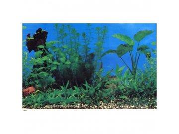 Akvarijní pozadí C060050 výška 49cm