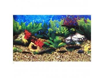 akvarijni pozadi c060030 vyska 305cm (5)