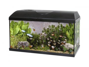 Akvárium set PACIFIC KID 40 x 25 x 20 cm 20 litrů + osvětlení