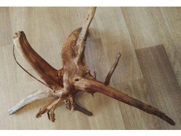 Borovicový kořen z vřesoviště, suchý-čistý