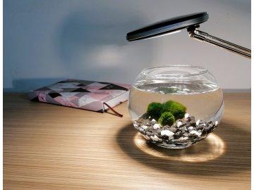SET Řasokoule a akvarijní koule 0,8 l s černo-bílým štěrkem set řasokoulí se skleněným akváriem a štěrkem černé a bílé kamínky kameny s řasokoulemi habeo.cz