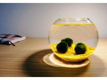 SET Řasokoule a akvarijní koule 2,5 l s žlutým štěrkem žluté kamínky kameny komplet dekorace kulaté akvárium řasokoule Habeo.cz