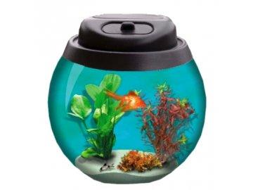 Kryt s osvětlením na akvarijní kouli 15 l PLASTOVÝ KRYTKULATÝ NA KULATÉ AKVÁRIUM AKVARIJNÍ KOULE osvětlení ilustrační foto habeo.cz