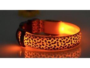 Svítící gepardí oranžový obojek pro psy