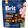 Brit Premium by Nature Dog Senior S+M 1 kg