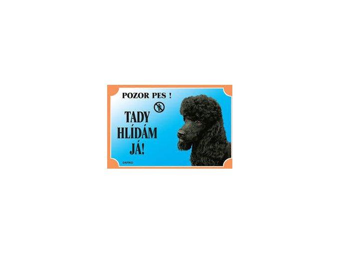 Barevná cedulka Pozor pes Pudl černý