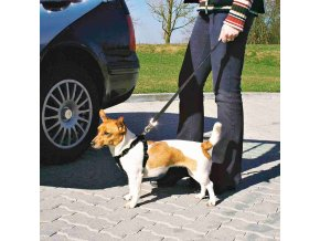 Postroj do auta pro psa 30-60cm