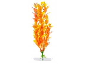 18336 orange ludwigia 18 21 cm 1