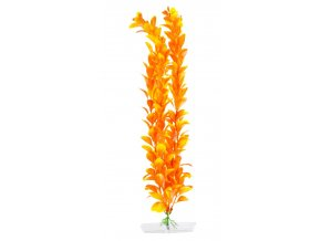 18338 orange ludwigia 38 43 cm 1
