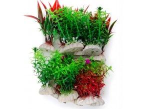 18396 akvarijni rostlinka
