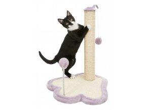 240774 PHO PRO CAT CLIP 42931 1