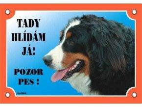Barevná cedulka Pozor pes Bernský salašnický pes