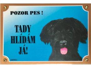 Barevná cedulka Pozor pes Briard černý