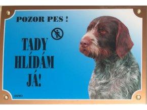 Barevná cedulka Pozor pes Český fousek