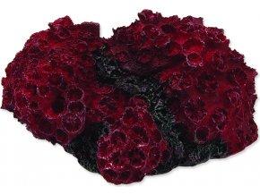 Dekorace AQUA EXCELLENT Mořský korál červený 11 x 9,6 x 5,3 cm 1ks