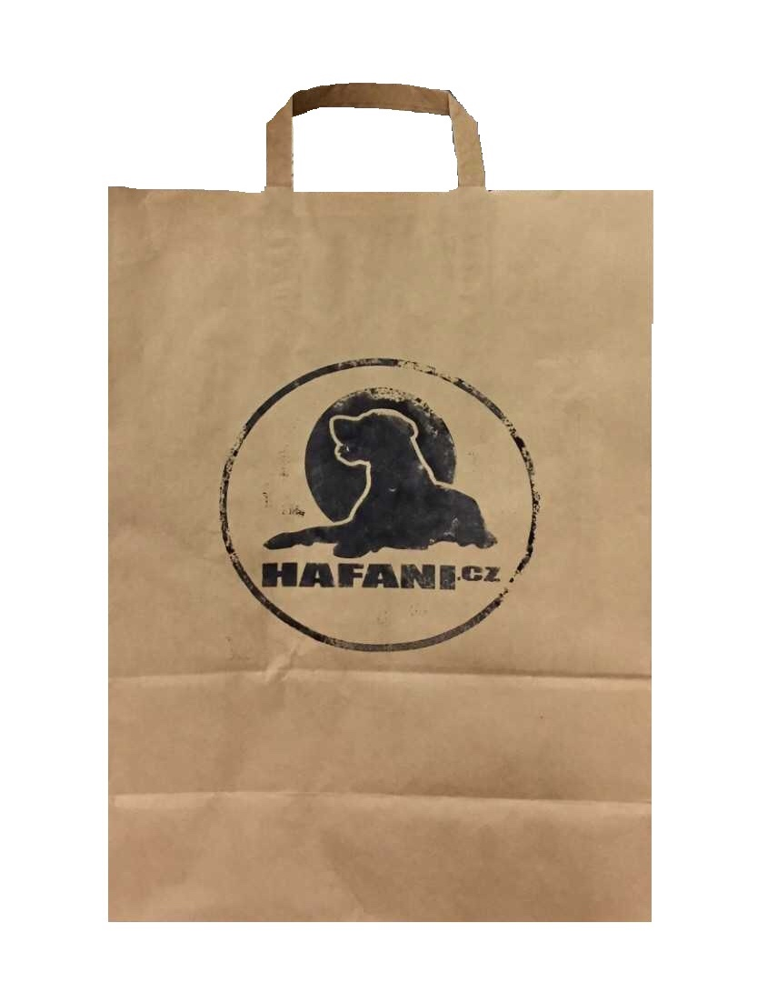 Ekologická papírová taška