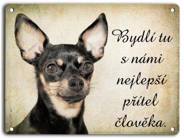 Pražský krysařík I. - přítel