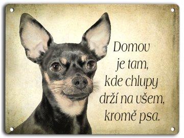 Pražský krysařík I. - domov