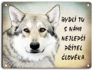 Československý vlčák-přítel