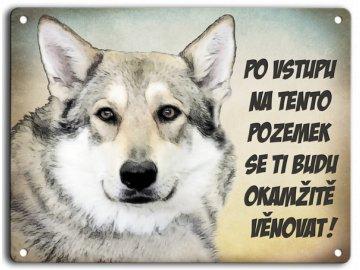 Československý vlčák-hlídací