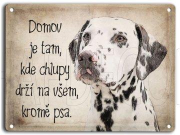 Dalmatin-domov