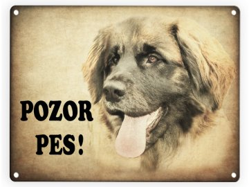 Leonberger-Pozor pes