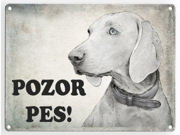Výmarský ohař- pozor pes