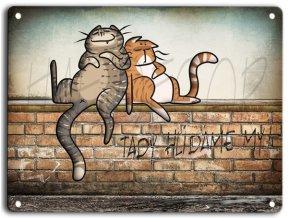 Kočky na zídce-mourovaté