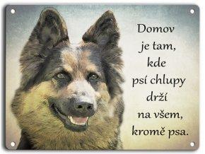 Chodský pes-domov