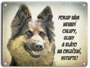 Chodský pes- sliny a bláto