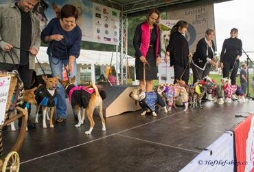 Módní přehlídka oblečků pro psy For My Dogs