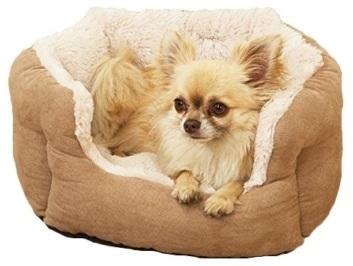 Jak vybrat psí pelíšek
