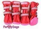 Boty pro psy, ponožky