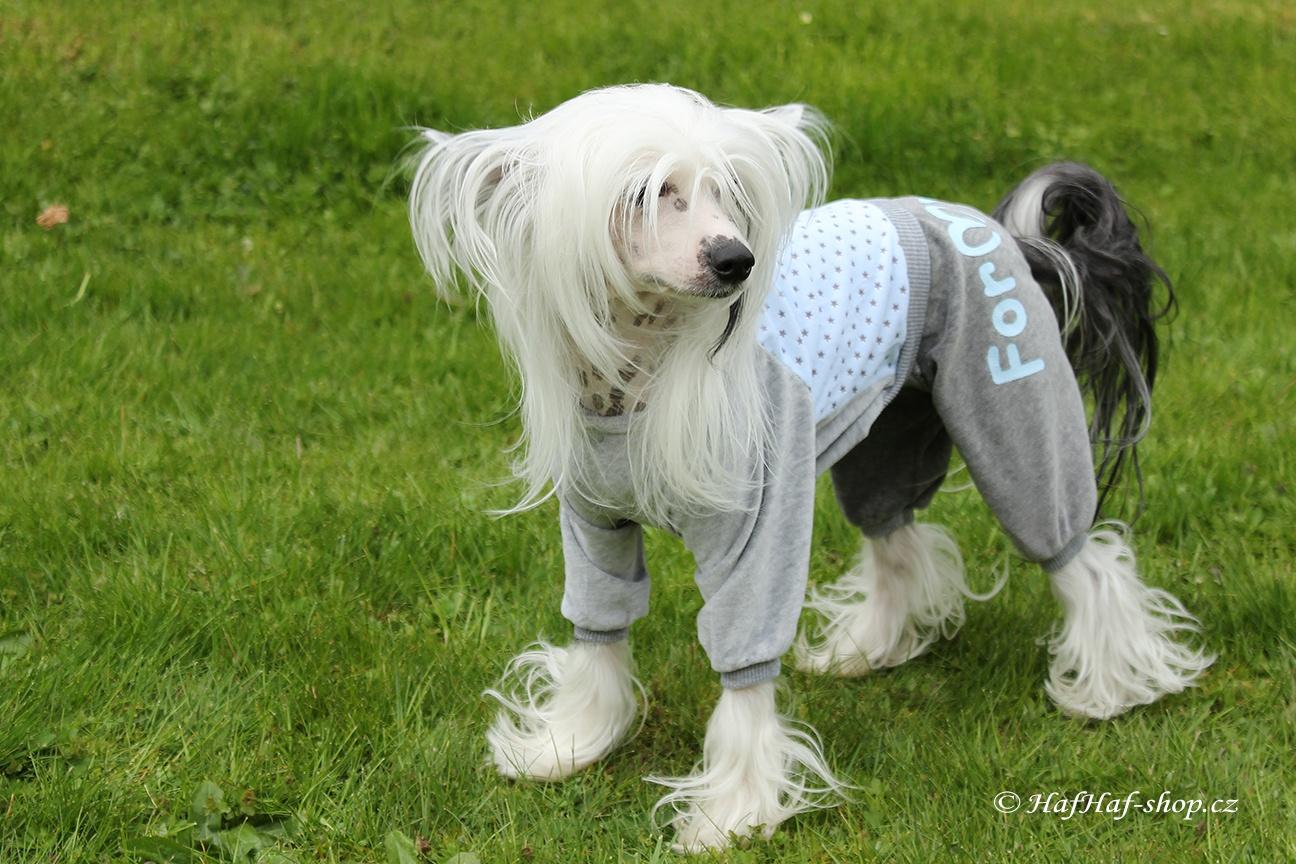 Oblečky pro psy – Velurový overal, modrý s hvězdami