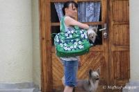 FOTO – Luxusní prostorná kabelka/taška na psy z kolekce Urban Pup, řada ORCHID. Doporučená maximální váha psa 8 kg (4).