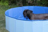 Bazén pro psy z odolného materiálu. Rozložení během několika vteřin, neklouzavé dno, odvodňovací ventil. Rozměry 120 × 30 cm. (5)