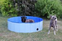Bazén pro psy z odolného materiálu. Rozložení během několika vteřin, neklouzavé dno, odvodňovací ventil. Rozměry 120 × 30 cm. (6)