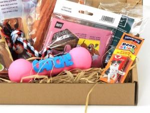 Dárkový balíček pro psy s pamlsky a gumovou pískací hračkou (2)