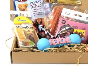Dárkový balíček pro psy s pamlsky a gumovou pískací hračkou (3)