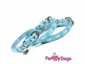 Obojek pro psy od FMD, modrobílý