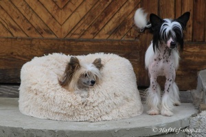 FOTO – Huňatý pelíšek pro psy i kočky od I LOVE PETS – měkké bočnice, vyjímatelný polštář, materiál luxusní soft fleece s dlouhým vlasem (3).